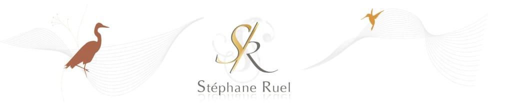Stéphane Ruel – Graphiste Webdesigner Photographe en Avignon